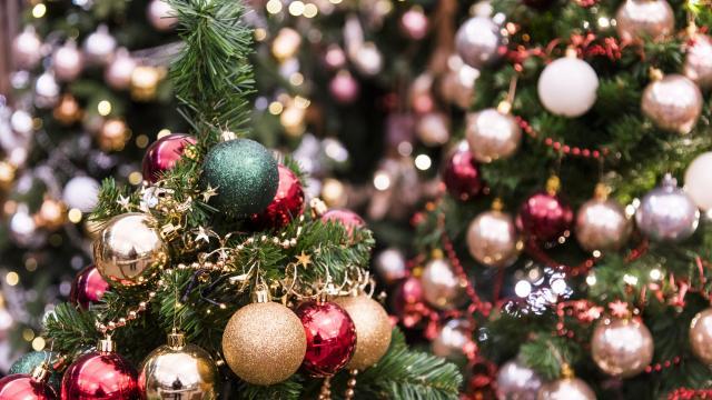 Falende Christelijke Bezinning Bij Kerst Suriname Herald
